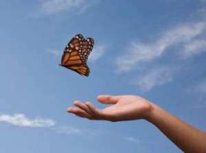 letting-go-butterfly